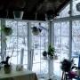 """Pozostałe, Zima w ogrodzie """"Wyjątkowego domu"""""""