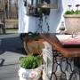 Pozostałe, Kwietniowe lato :) - ja też z wielką lubością siedzę w moim bujaku :)