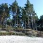 Leśne klimaty, Wspomnienia z wakacji w Kopalinie - Plaża nad Bałtykiem