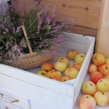 Jabłek było bardzo dużo.