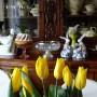 Jadalnia, Wiosenna galeria po świętach