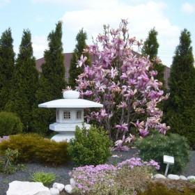 Tropem ogrodników...