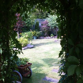 Mój ukochany ogród...