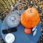 Ogród, Kawa czy herbata ? - Kawka na tarasie w słoneczne listopadowe południe smakuje wybornie :)