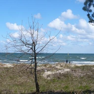 ..............i widok na morze.................