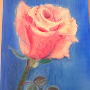 Róża w Dniu Kobiet
