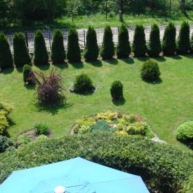 mój ogródek
