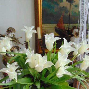 ...................i tulipany w domu...................