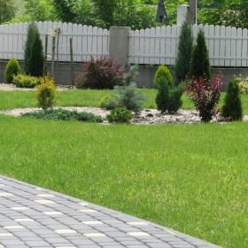 2-letni ogród