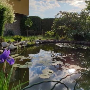 Przedstawiam Wam mój przydomowy ogród. Stworzony z ogromnym zaangażowaniem i cierpliwością.  Pielęgnowany z pasją.