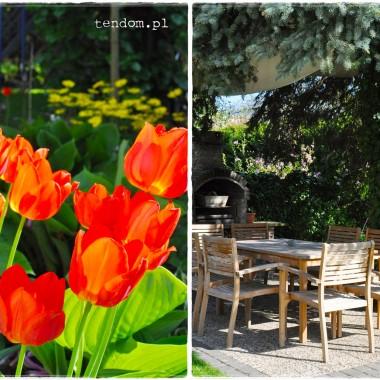 Więcej na naszym blogu: http://tendom.blogspot.com/2014/05/soneczna-energia.html