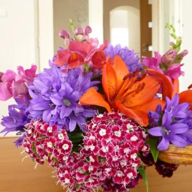Kwiatowa galeria :)