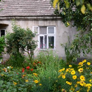 wiejski ogródeczek