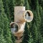 Domy i mieszkania, Niezwykły dom na drzewie