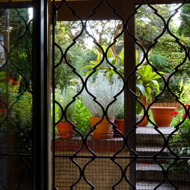 Tę galerię dedykuję Krysi Siakry, miłośniczce ogrodów i kwiatów. I wielkiej działkowiczce, stąd tu kwiaty i owoce. Moje lato też było dość pracowite. Dosięgło nawet spiżarni.Serdecznie dziękuję za pozdrowienia. Zaglądaj tu czasem.