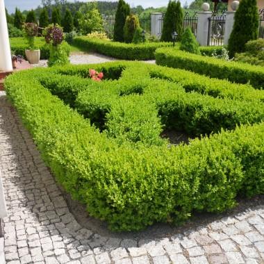 Ogród wczoraj i dziś