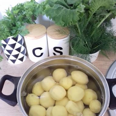 ziemniaczki z 1 wykopu :) + jarmuż,pietruszka,koper