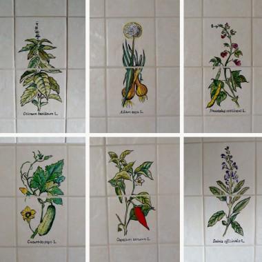 Zioła w kuchni - realizacja dekorów wg projektu klientki