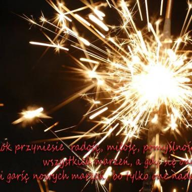 W Nowym Roku życzę wszystkim moc szczęścia i miłości , trafnych wyborów i sukcesów w dążeniu do celu :)