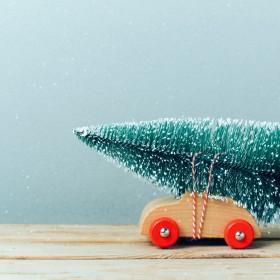 Dekoracje  świąteczne z roślin w stylu zrób to sam