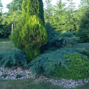 Miesiące śmigają jak szalone, już wakacje . Połowa roku za nami , plany urlopowe w pełni. Ogród niewiele się zmienia ale już brakuje miejsca do nowych rabatek:) tym to jest zachwycony mój mąż:))) Kilka ujęć z ogrodu, czasem jest chwila żeby kawkę w spokoju wypić ... pozdrawiam i dziękuję za każdy komentarz i odwiedziny. Pozdrawiam wakacyjnie Aga.