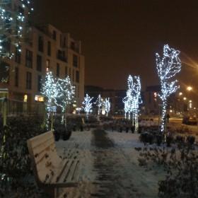 Zima Zima