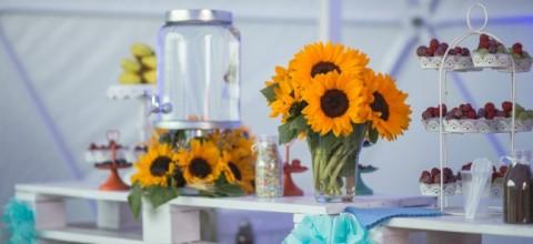 Meble z palet – doskonała dekoracja do domu, ogrodu i na eventy