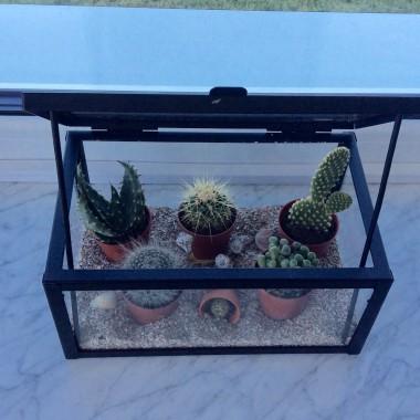 Witam!Do zmian zainspirowal mnie zakup kaktusa, a takze Wasze komentarze&#x3B;)Zapraszam do ogladania...Pieknego tygodnia Wam zycze&#x3B;)