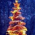 w świątecznym nastroju:))