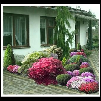 JUST DESIGN projekty ogrodów  www.projektowaniekostki.pl