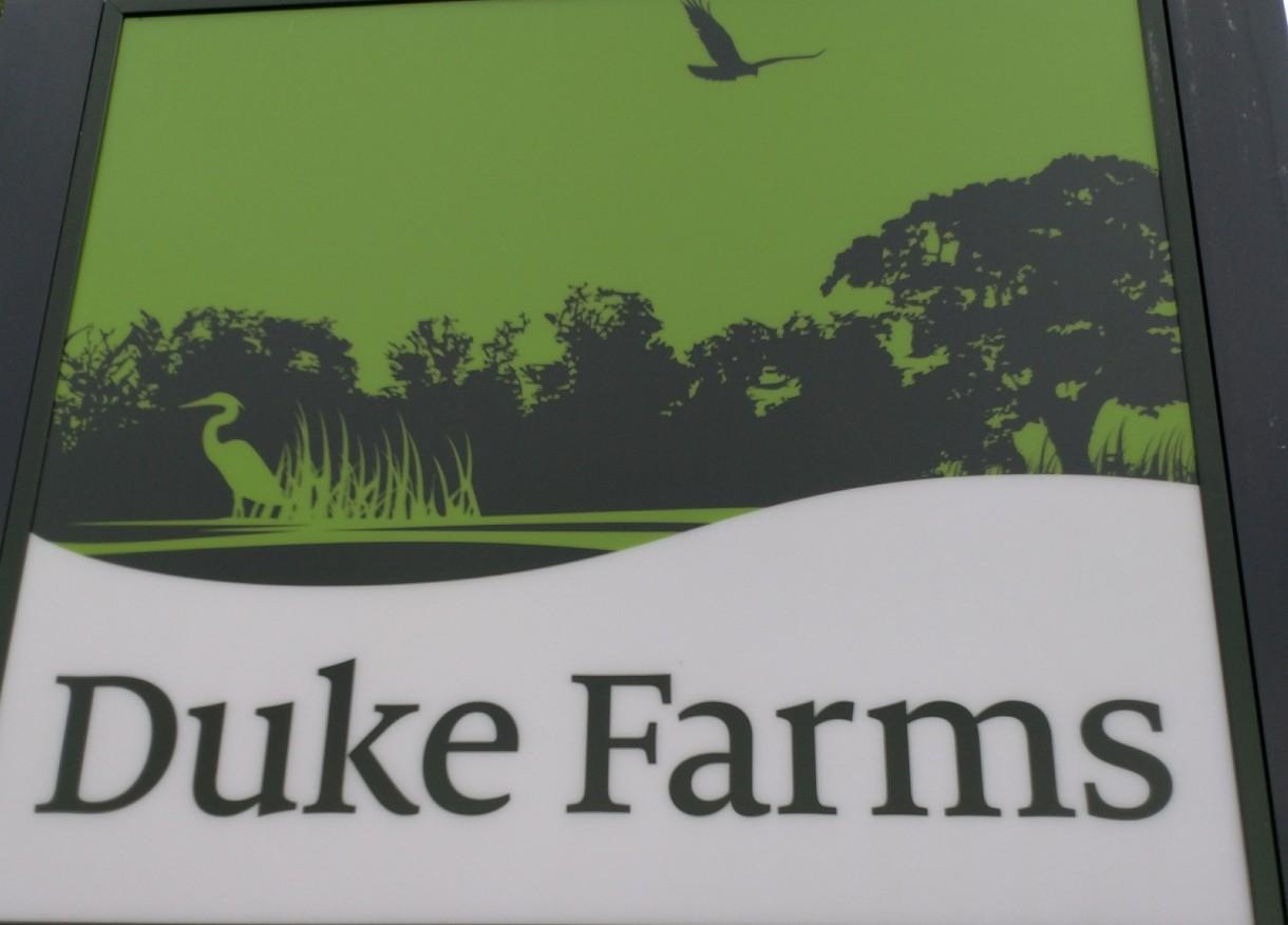 Pozostałe, Duke Farm...