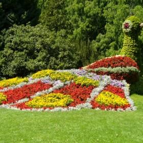 wyspa kwiatów