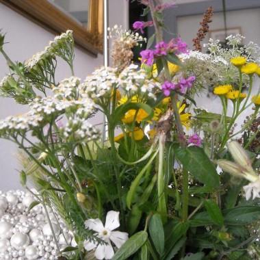 Kwiaty polne................................