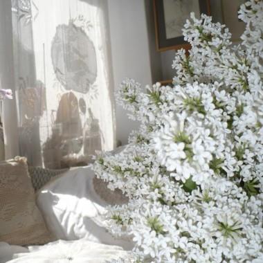 ..............i bzu kwiatki..........