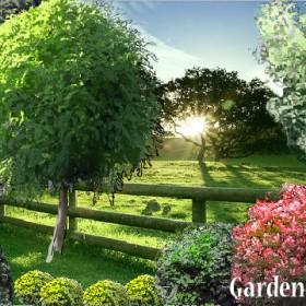 Nowa porcja projektów wymarzonych ogrodów