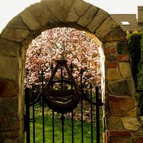 """Wiosna w ogrodzie """"Wyjatkowego domu"""""""