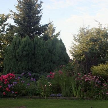 ta część, to kwiaty niebieskie, różowe i filetowe:)