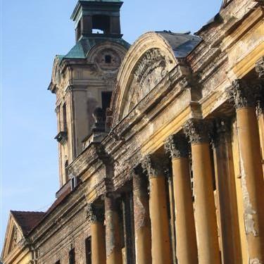 Ruiny pałacowo-zamkowe w Żarach