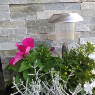 Dzisiaj rano niespodzianie zapukała do mych drzwi Wcześniej niż oczekiwałem przyszły te cieplejsze dni Zdjąłem z niej zmoknięte palto, posadziłem vis a vis Zapachniało, zajaśniało, wiosna, ach to TYWiosna, wiosna, wiosna, ach to TY!