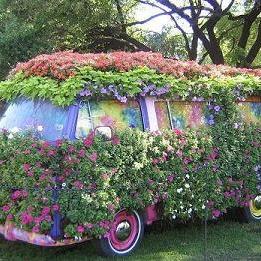 Kreatywny i tani ogródek :)