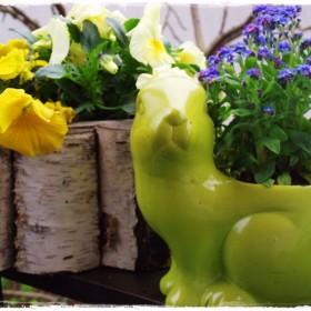 Wiosenne czarowania i zauroczenia &#x3B;&#x3B;&#x3B;