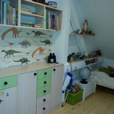 Pokoik małego znawcy dinozaurów