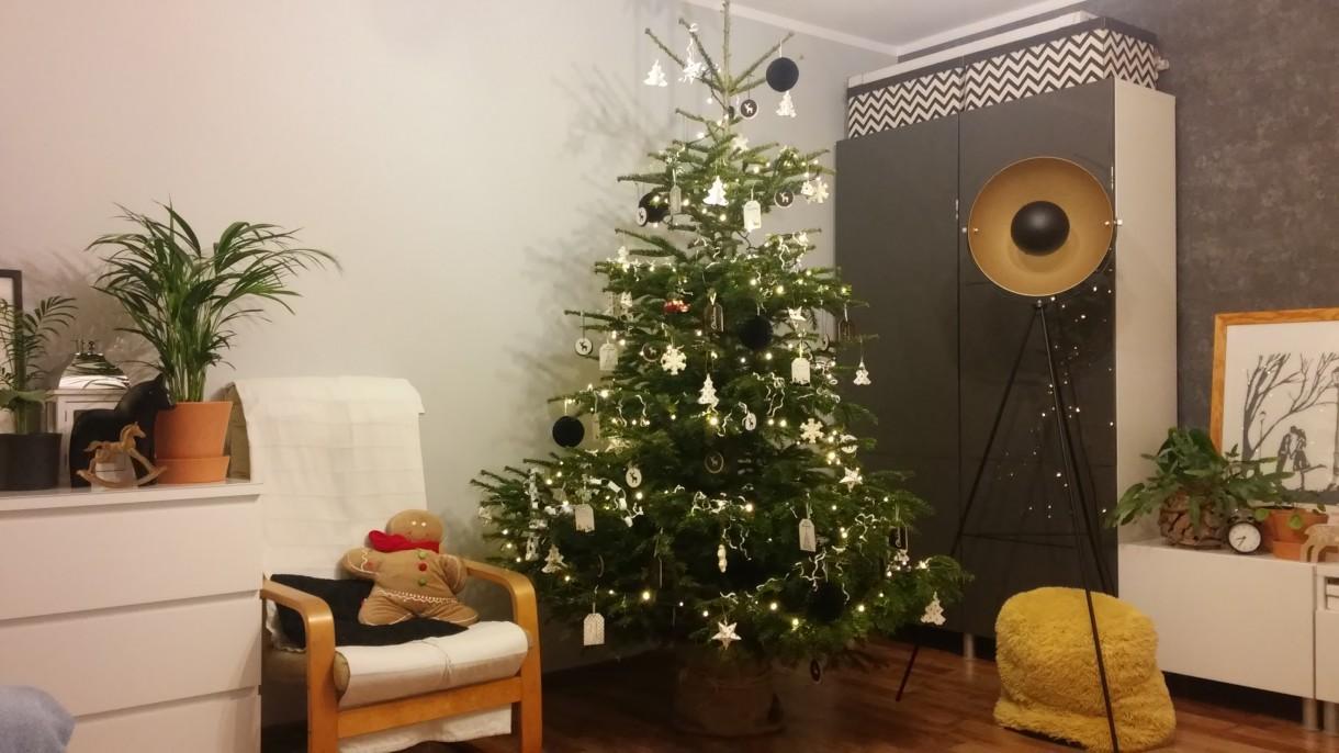 Salon, Jeszcze świątecznie....