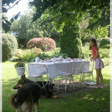 Stolik pod czereśnią. Tu jemy posiłki w bardzo gorące dni. Czereśnia chroni przed skwarem.