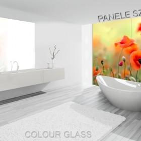 Łazienki - nowe oblicze paneli szklanych