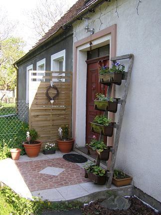 Rośliny, Kwiaty w pojemnikach