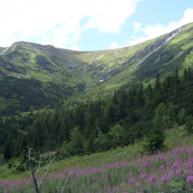 wspomnienie lata - lipec w Tatrach