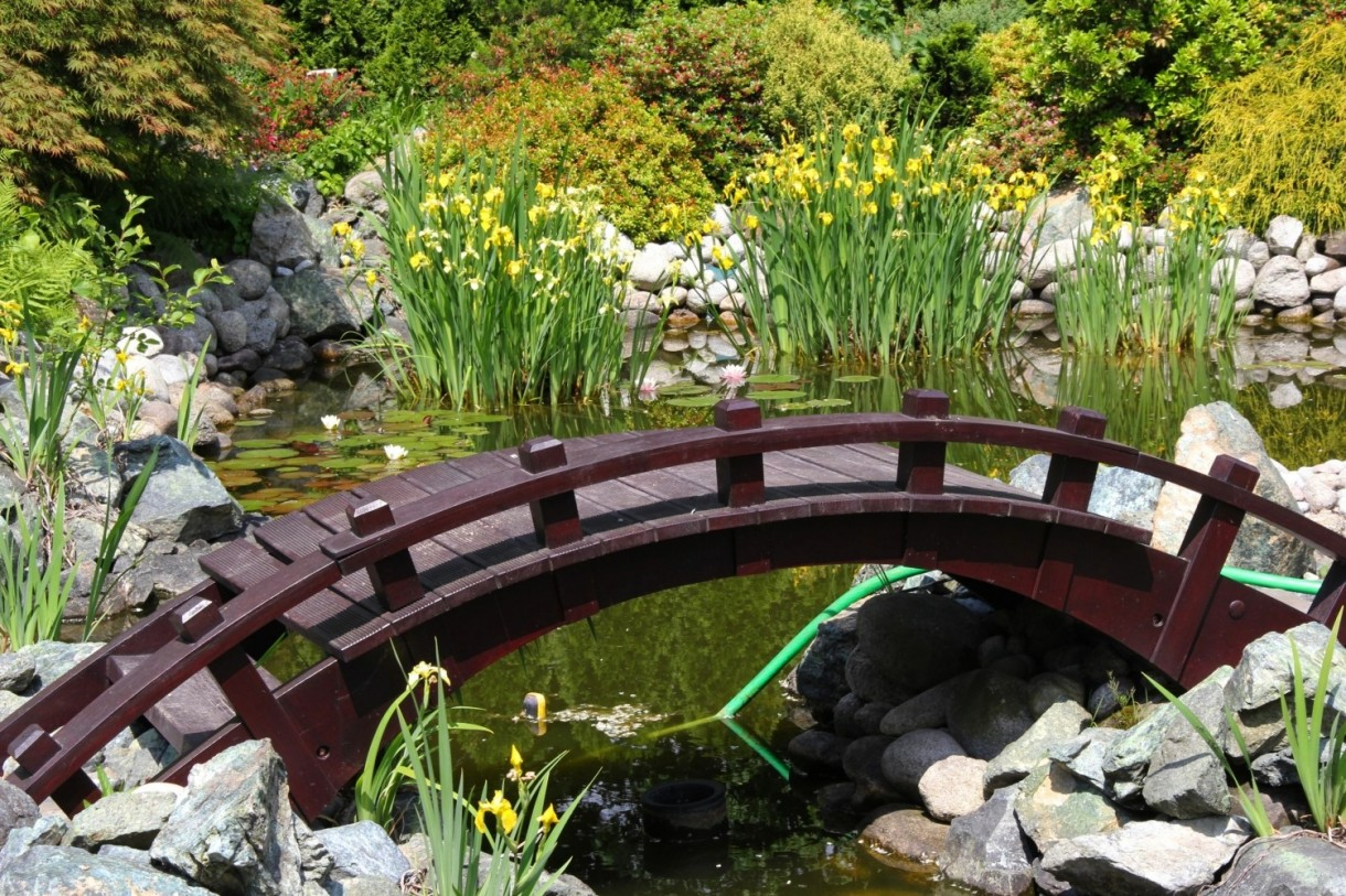 Pozostałe, ogród japoński - ...