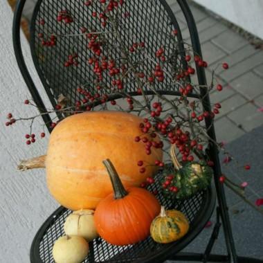 W jesiennych kolorach liści..