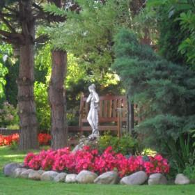 Mój ogród - kolejna odsłona :)